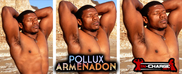 In-Charge.net - Pollux Armenadon