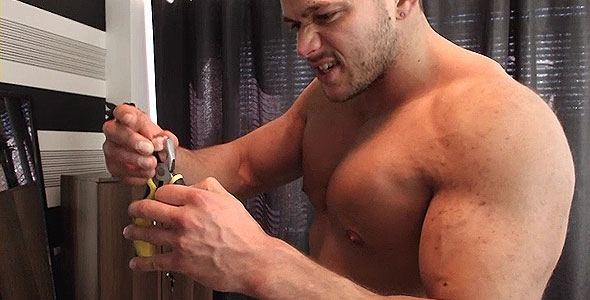 dino phillips gay porn adult entertainment